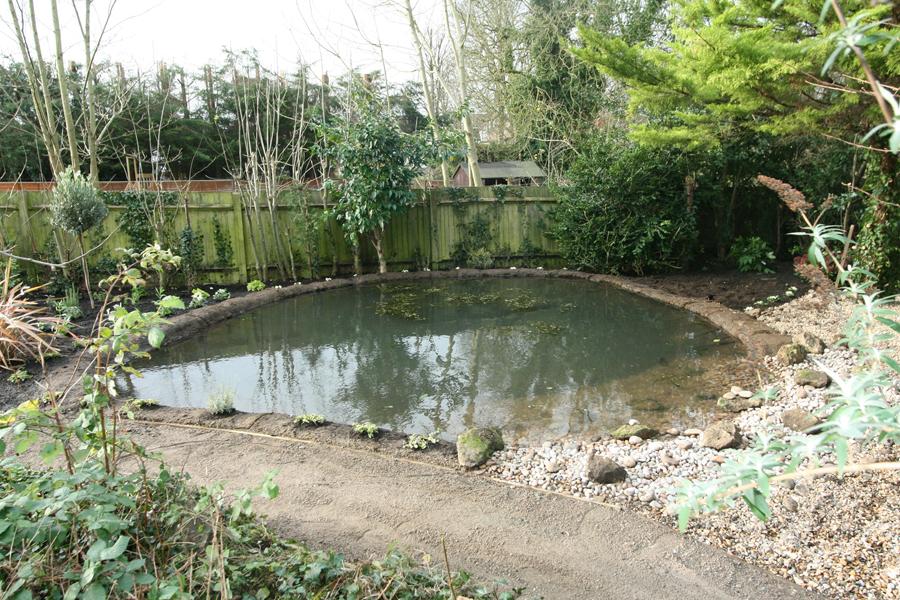 Wildlife Garden Ponds London