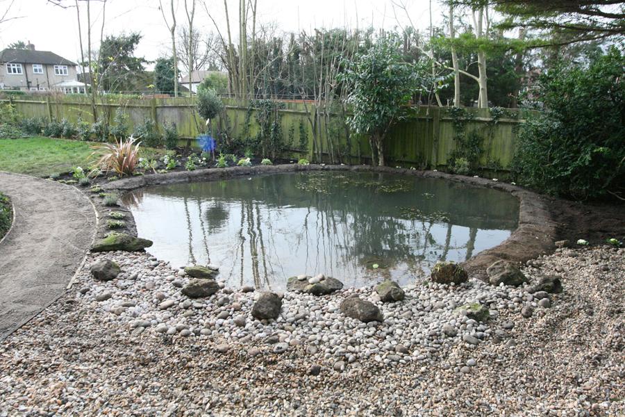 Wildlife Garden Ponds Sutton