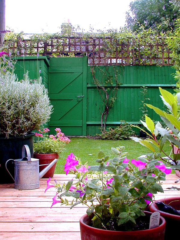 Contemporary Landscaping Wimbledon