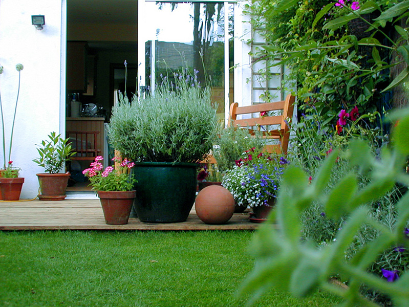 Small Garden Design Wimbledon