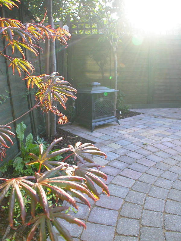 Contemporary Landscaping Putney