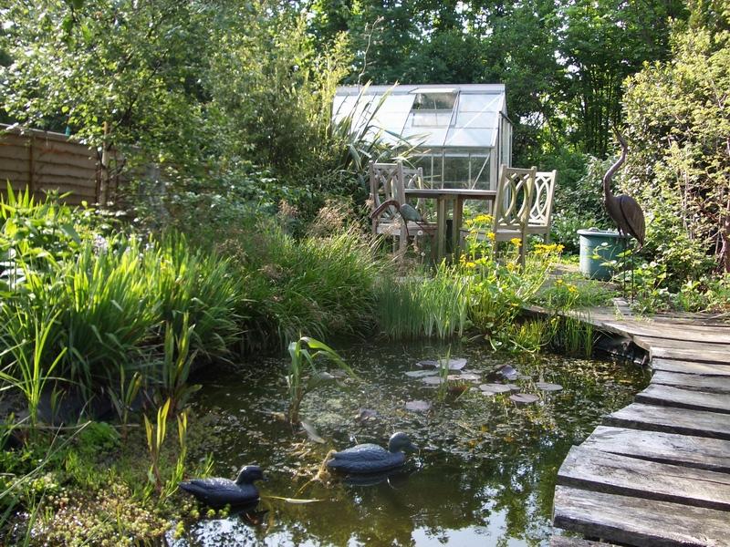 Wildlife Garden Landscaping London