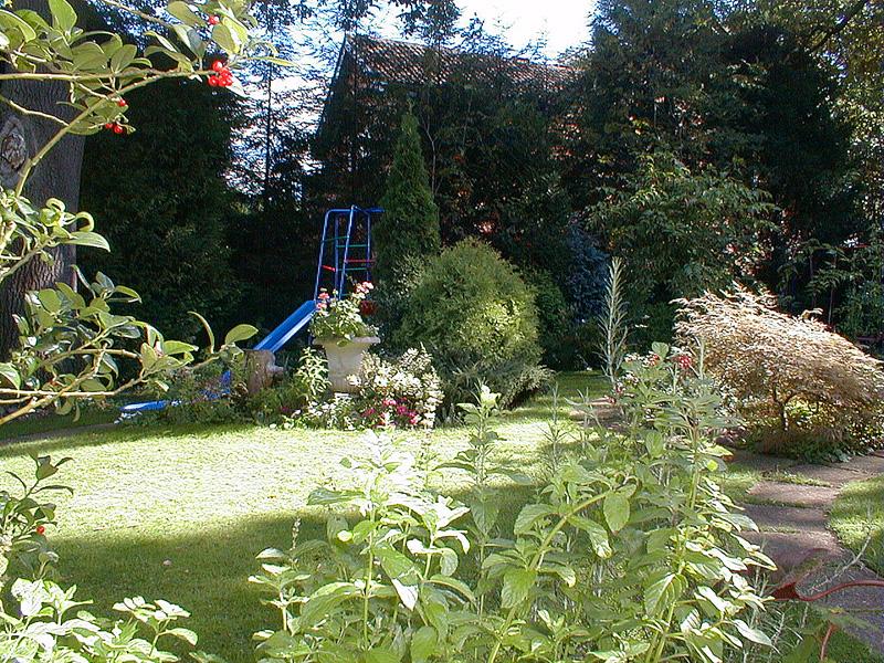 Family Garden Design Wimbledon