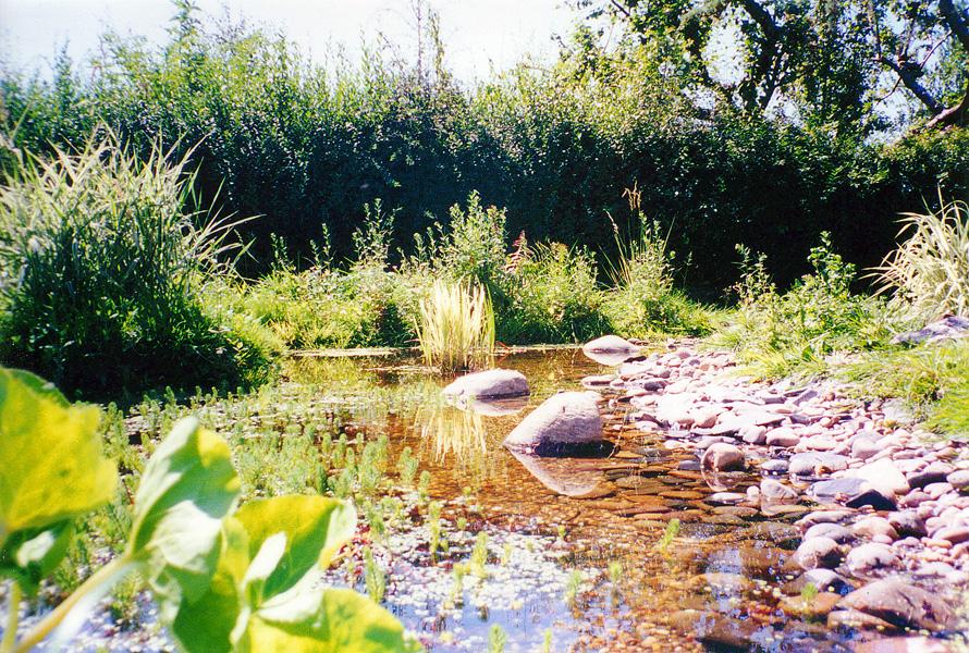 Wildlife Garden Design Sutton