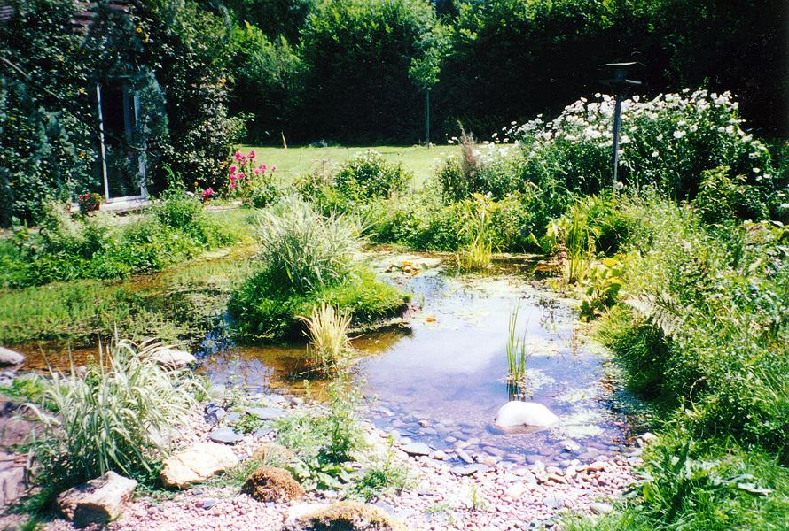 Wildlife Garden Design Croydon
