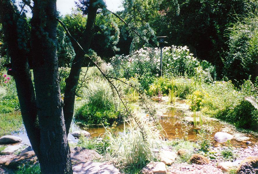 Wildlife Garden Design Wallington