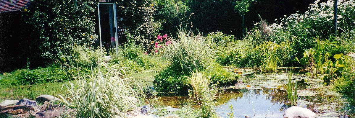 Large Garden Design Wallington