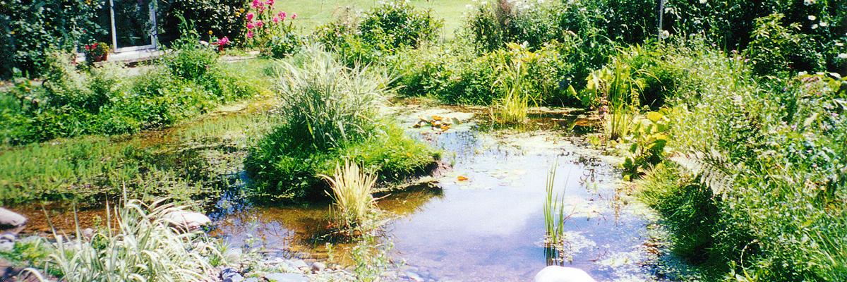 Large Garden Landscapes Wallington