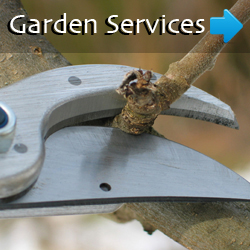 EarthCare Gardens is a landscaping company that will satisfy all your landscaping needs