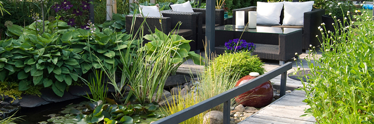 Wildlife Garden Design London