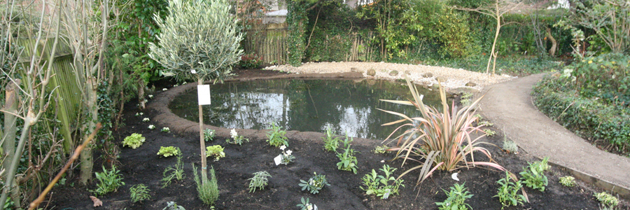 Ponds Landscaping Wallington