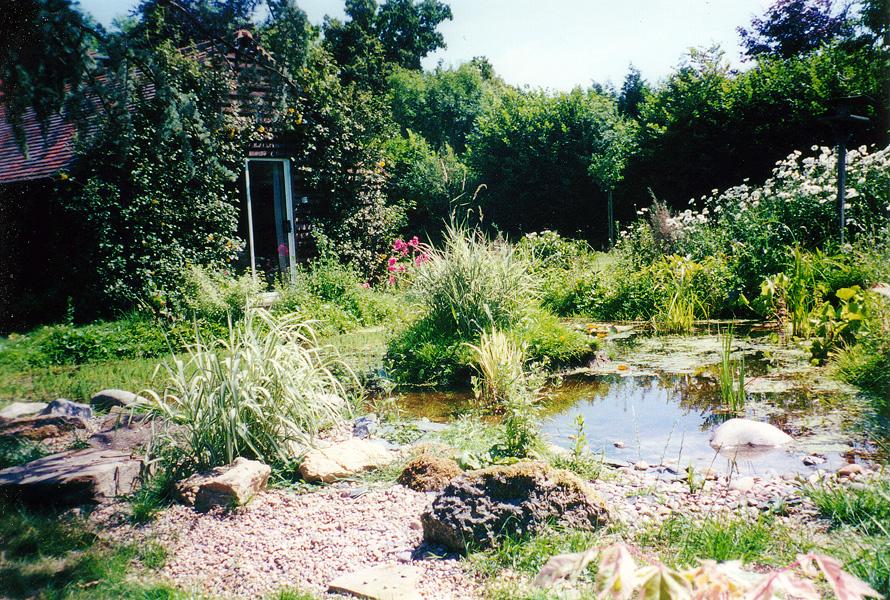 Wildlife Garden Ponds Wallington