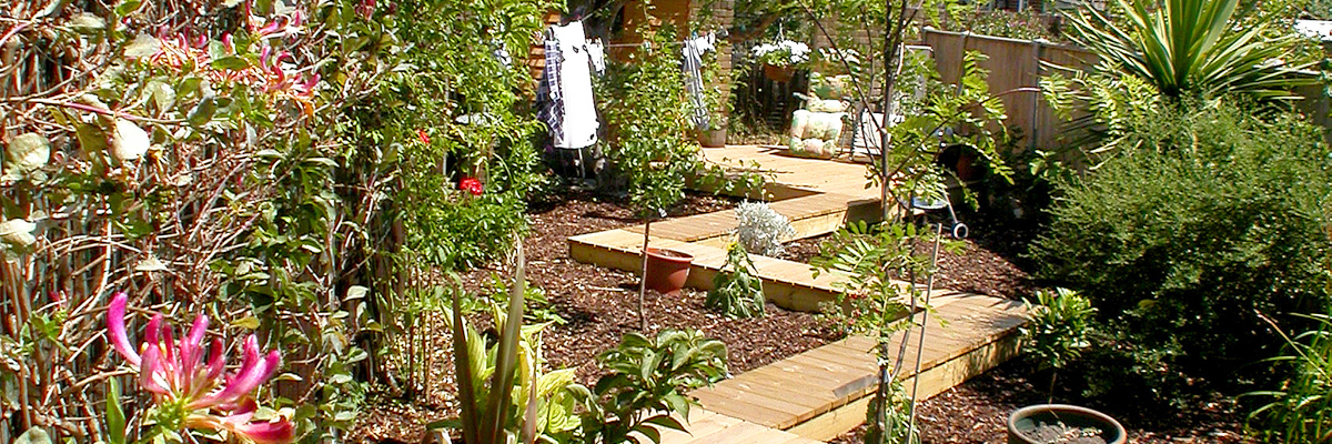 Large Garden Design Sutton